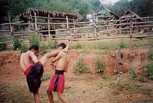 Thai fighters practice.jpg