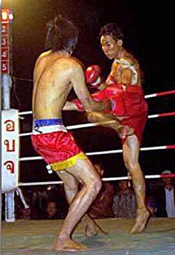 Thai fighters.jpg