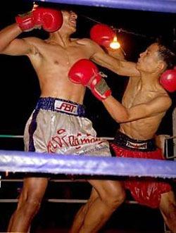 Thais fighters2.jpg