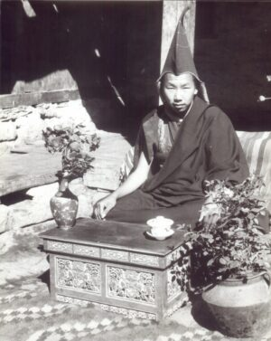 Young abbot of Tengboche Monastery